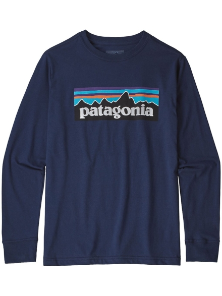 Patagonia Graphic Organic Long Sleeve T-Shirt blauw