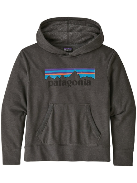 Patagonia LW Graphic Hoodie grijs