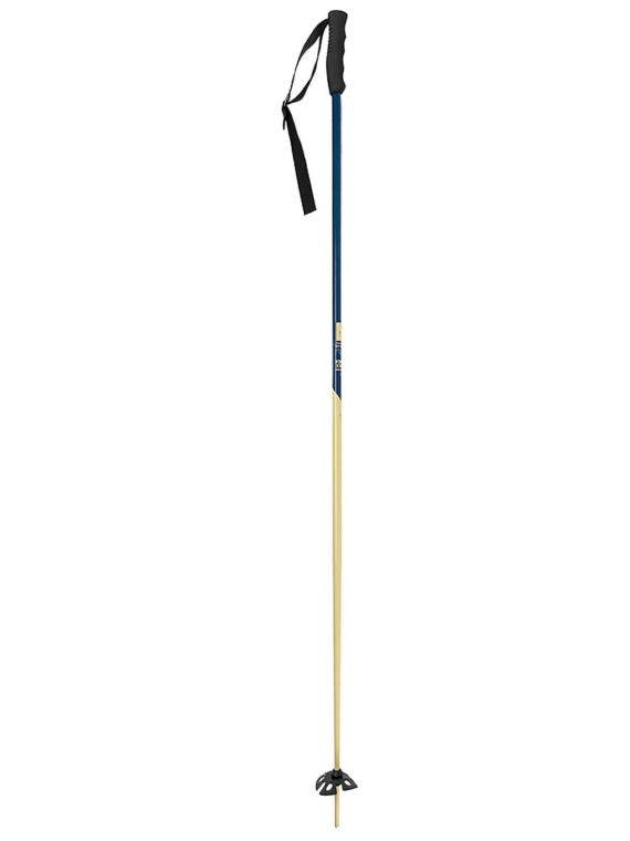 Faction Candide Thovex 105 patroon