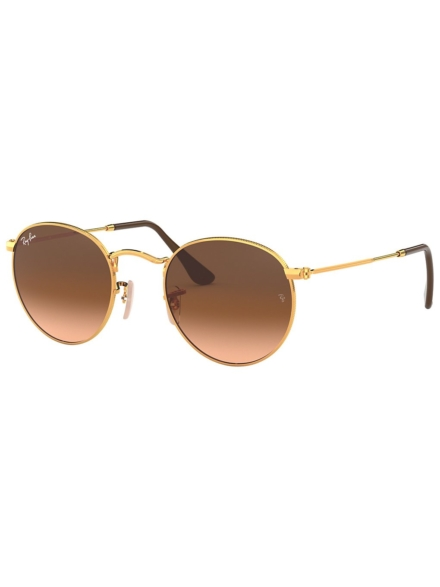 Ray-Ban Round Metal Shiny Light Bronze bruin