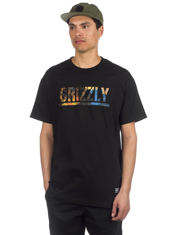Grizzly Stamped Scenic T-Shirt zwart