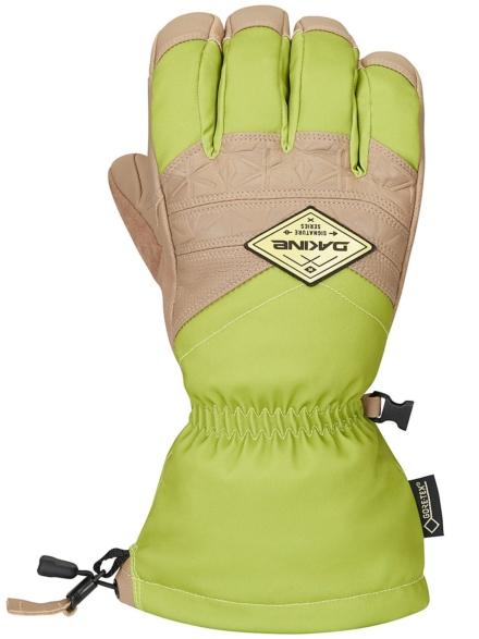Dakine Team Excursion Gore-Tex handschoenen groen