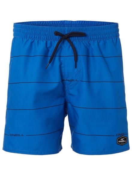 O'Neill Contourz Boardshorts blauw