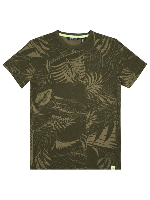 O'Neill Isaac Aop T-Shirt groen