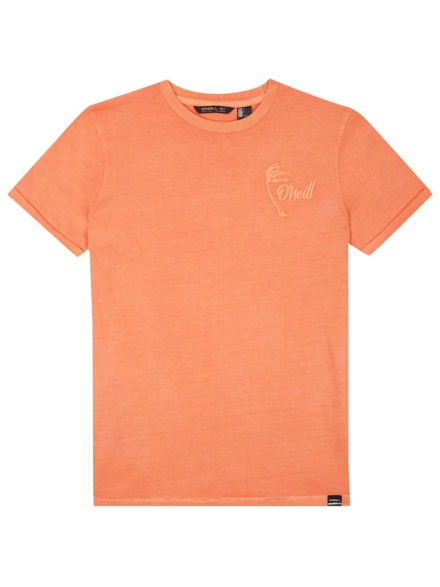 O'Neill Carter Washed T-Shirt oranje