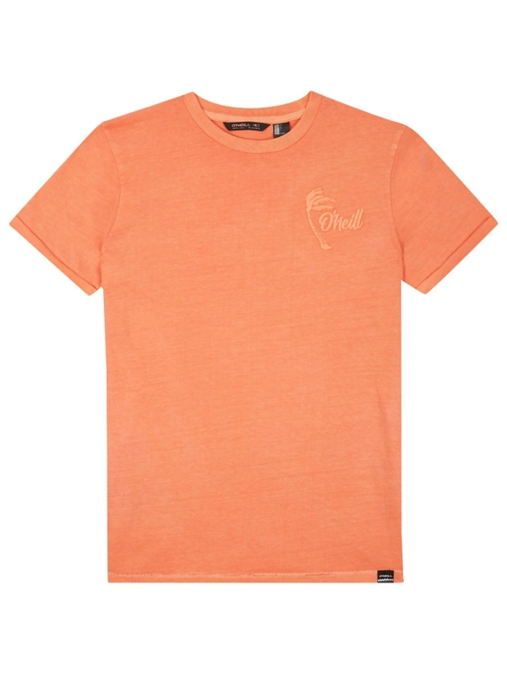 O'Neill Carter Washed T-Shirt oranje