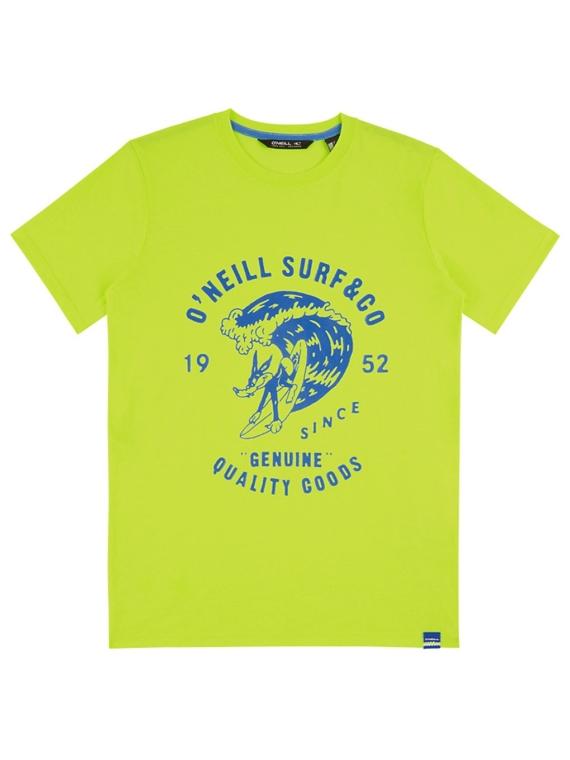 O'Neill Connor T-Shirt geel