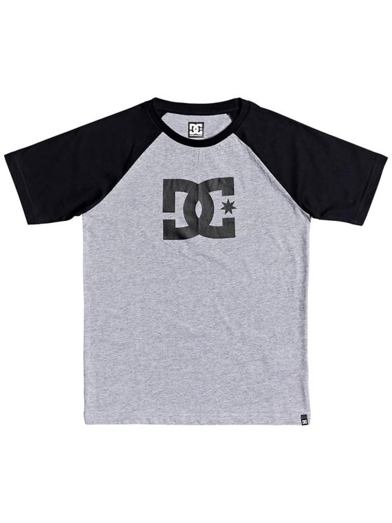DC Star SS 2 Raglan T-Shirt grijs