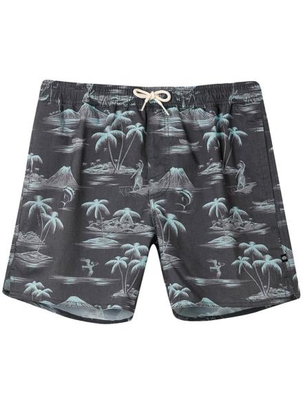 Animal Del Sur Boardshorts zwart
