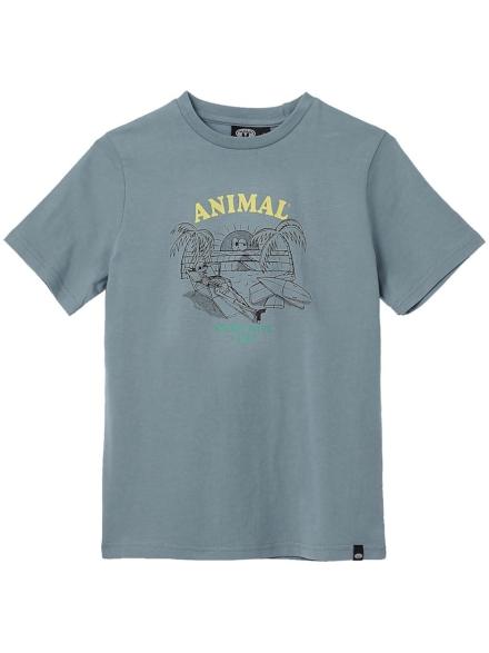 Animal Chilling T-Shirt grijs