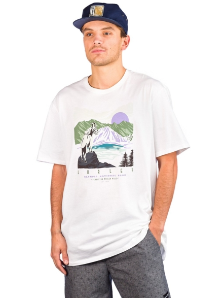 Hurley Pendleton Olympic T-Shirt wit