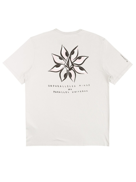 Volcom Ryan Burch T-Shirt grijs